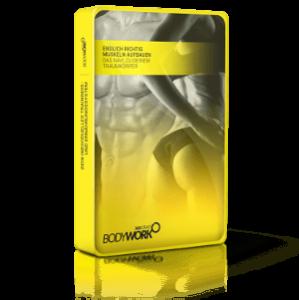 Bodywork360 - KarlEss - Online Fitness Kurs